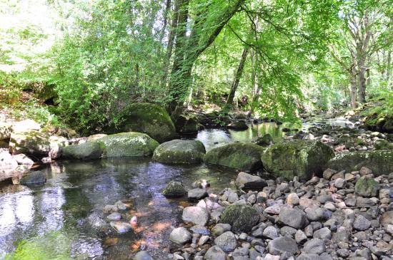 "Gidleigh Park: River and ""bridge"""
