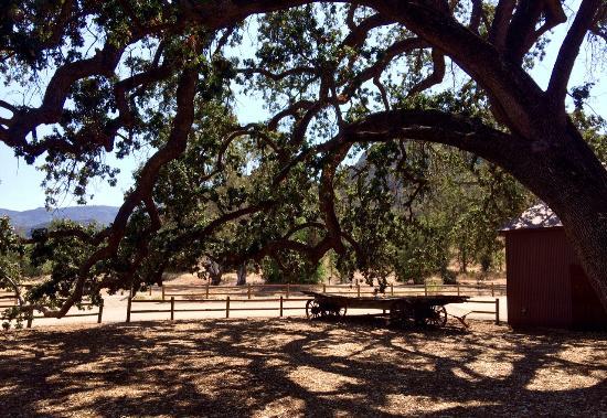 Agoura, كاليفورنيا: Old West Views