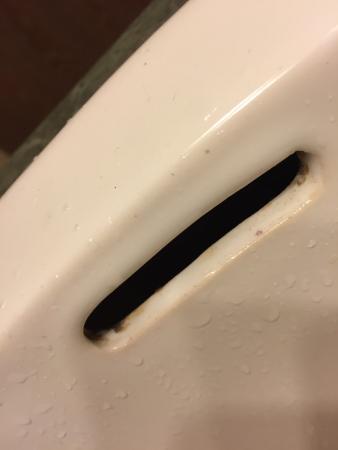 Black Mold In Sink 119