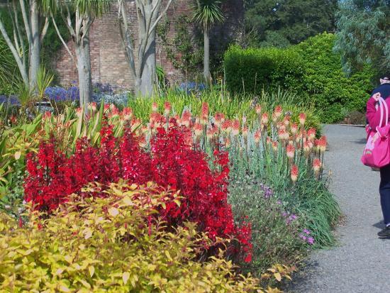 Logan Botanic Garden Gardens