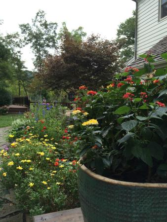 Fort Lewis Lodge: Lovely flowers throughout the grounds