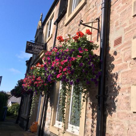 Craigside Lodge Guesthouse: Entry