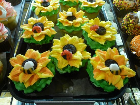 Amherst, MA: Cupcakes with the cutest sunflowers