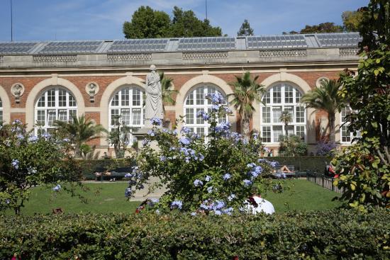 Paris jardin du luxembourg l 39 orangerie lieu des for Jardin orangerie