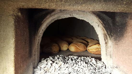 Seulo, Italie : Agriturismo Ticci