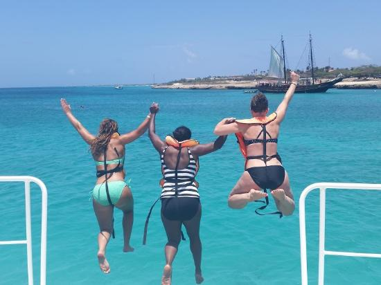Pelican Adventures: Jumping into the beautiful waters!