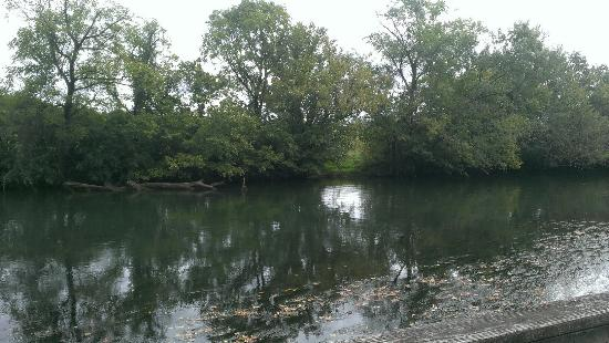 Holston River Park