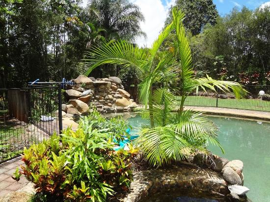 Malanda Lodge Motel: Tropical Pool area