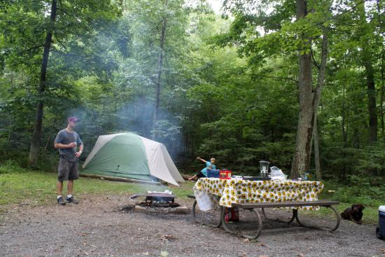 Mathews Arm Campground: Campsite A29