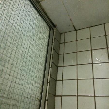 Fountain Court Motor Inn: Disgusting