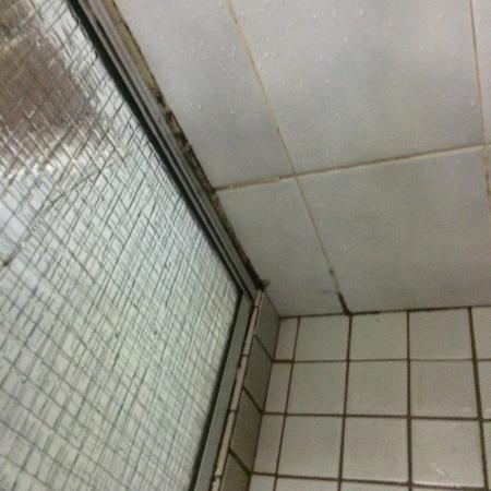 Fountain Court Motor Inn : Disgusting