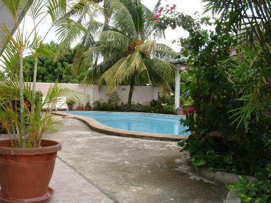 Villa San Juan: Garden & Pool