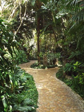 Hotel Kumala Pantai: T=One of the walking paths through the hotel gardens