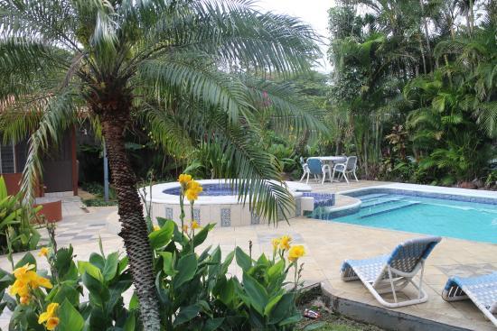 Hotel Villas Colibri: La piscine