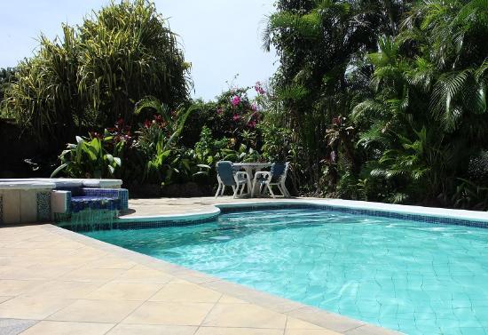 Hotel Villas Colibri : La piscine
