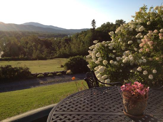 Greenville Inn: View from porch of the Inn