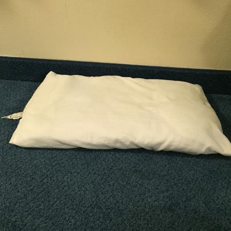 Motel 6 Jackson Airport- Pearl: Pillow 2 inches thick or feather pillows that flatten as soon as you lay a head on it