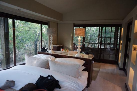andBeyond Phinda Forest Lodge: photo1.jpg