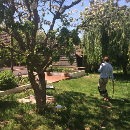 Buzsák, Ungarn: watering the plants
