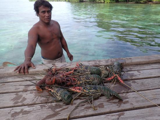Sanbis Resort: local crayfish catch