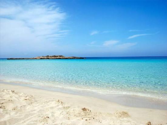 Constantinos the Great Beach Hotel: Beach