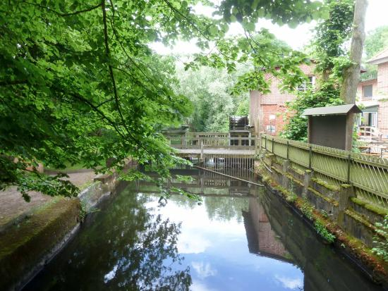 Gasthaus Horster Muhle: River by mill.