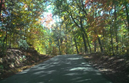 Landrum, Южная Каролина: Views nearby