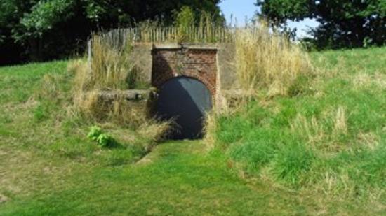 Picture of les jardins suspendus le havre for Jardin suspendu