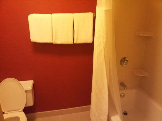 Courtyard Atlanta Airport South/Sullivan Road: Bathroom - toilet on the left and bath on the right