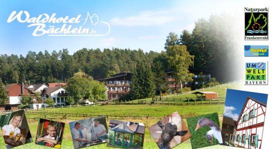 Sterne Hotel Waldhotel Bachlein