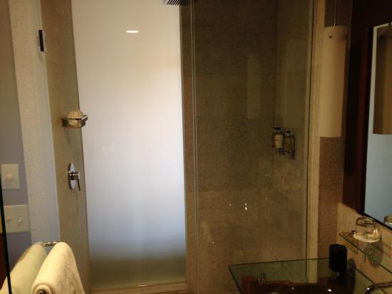 Hutton Hotel: Shower