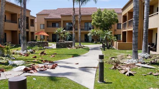 Courtyard Anaheim Buena Park: Interior gardens