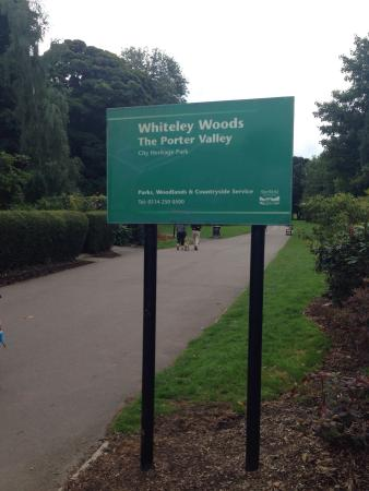 Bingham Park and Whiteley Woods