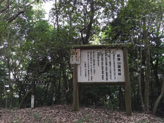 Yamato Sanzan : 畝傍山山頂です。
