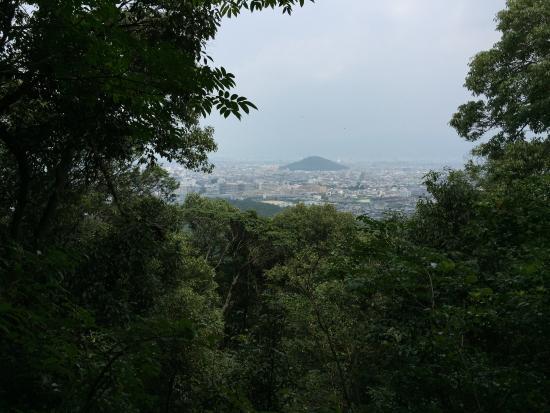 Yamato Sanzan : 山頂からの眺め。天香久山がよく見えます。