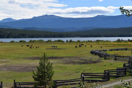 Terra Nostra Guest Ranch: Blick von der Veranda