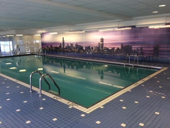 Swimming pool on the 42nd floor - Picture of Swissotel Chicago ...