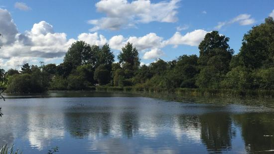 Bearsden, UK: Kilmardinny Loch
