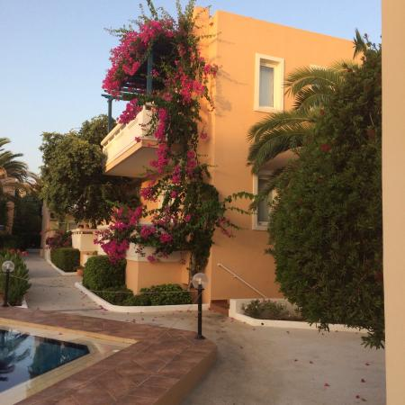 Hotel Ninemia