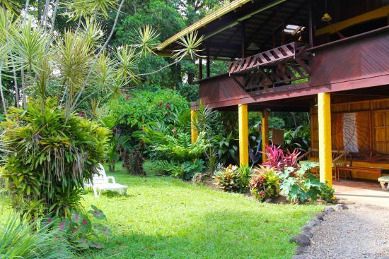 Magic Moon Beach House: Magic Moon garden