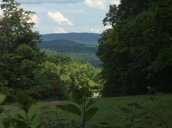 Windswept Acres: view