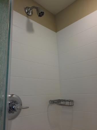 HYATT House San Jose/Silicon Valley: bathroom 01