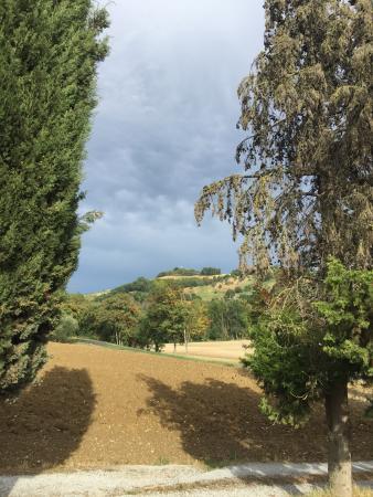 Agriturismo Angel's Hill Farm : photo2.jpg