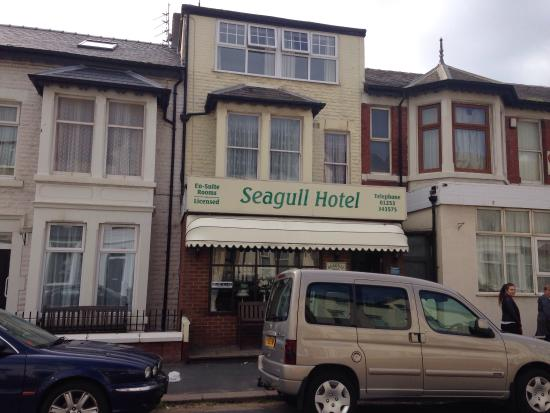 Seagull Hotel: photo0.jpg