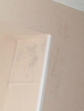 tache humidit plafond foto van hotel corner house blankenberge tripadvisor. Black Bedroom Furniture Sets. Home Design Ideas