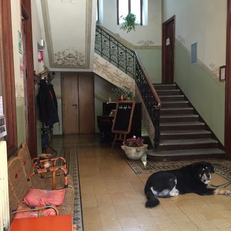 Albergo Rocciamelone: Un hotel liberty immerso nella natura della Val di Lanzo dove anche gli animali sono bene accett