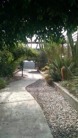 Cactus Garden Picture Of Living Desert Zoo And Gardens State Park Carlsbad Tripadvisor