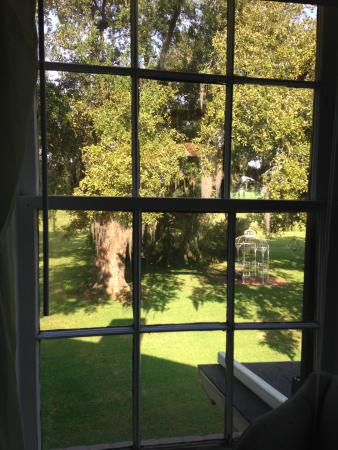 Twelve Oaks Plantation B&B: View from the window of the Scarlett Room