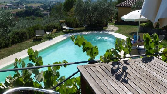Margherita Holiday Home : heerlijk zwembad