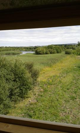 Marston Moretaine, UK: View from Tower hide
